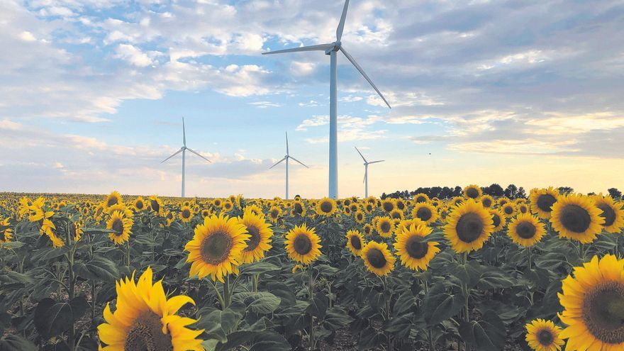 Ecosistemas esenciales para una economía sin emisiones