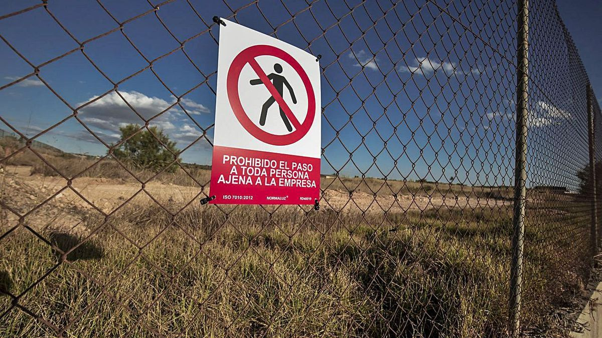 Feuchtgebiet, Mücken, nahe der Kläranlage: Dieser Standort ist für das Zentrum im Gespräch.  | FOTO: RAMON