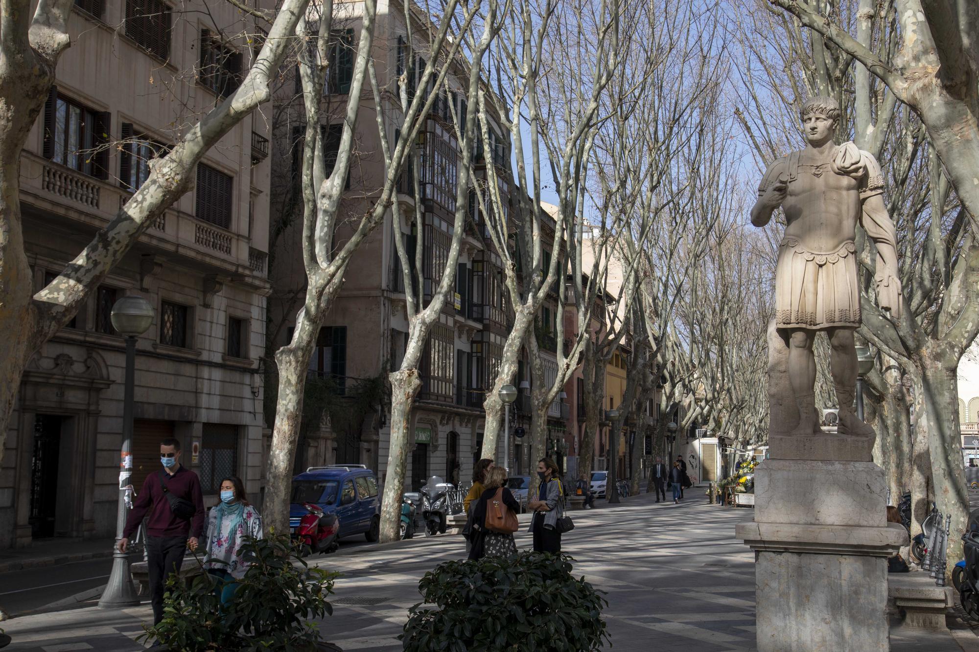 La Palma franquista persiste en la calle