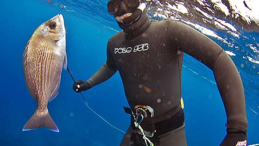 Nace una plataforma para defender la pesca deportiva en las «falsas reservas» de Balears
