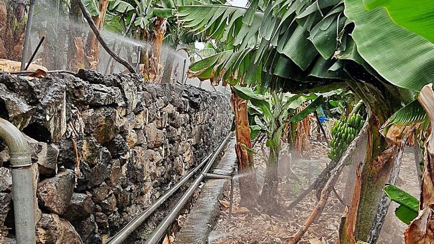 El campo de Los Sauces reduce un 33% el agua destinada al regadío