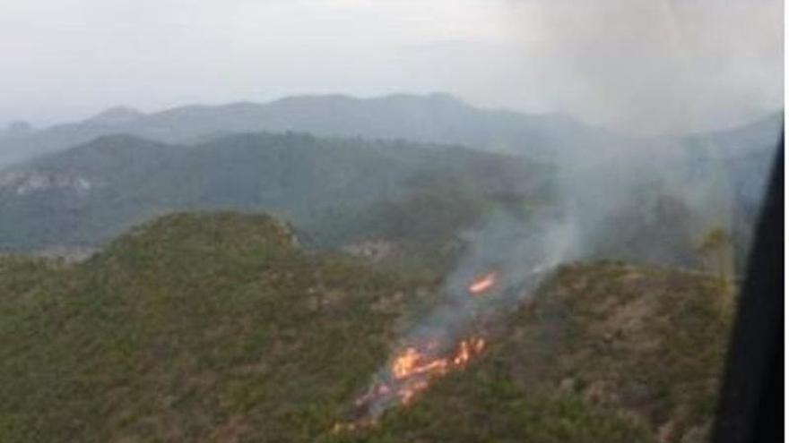 Incendio forestal en sa Coma de Andratx