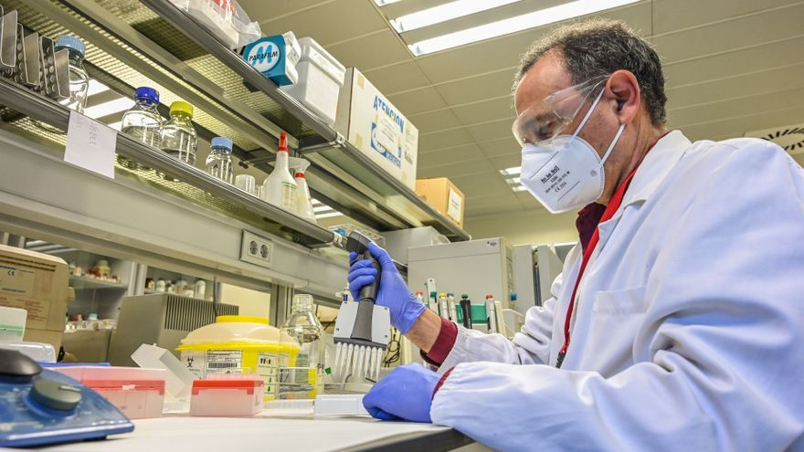 Fisabio y la UPV investigan un test para estudiar la seroprevalencia frente a la covid
