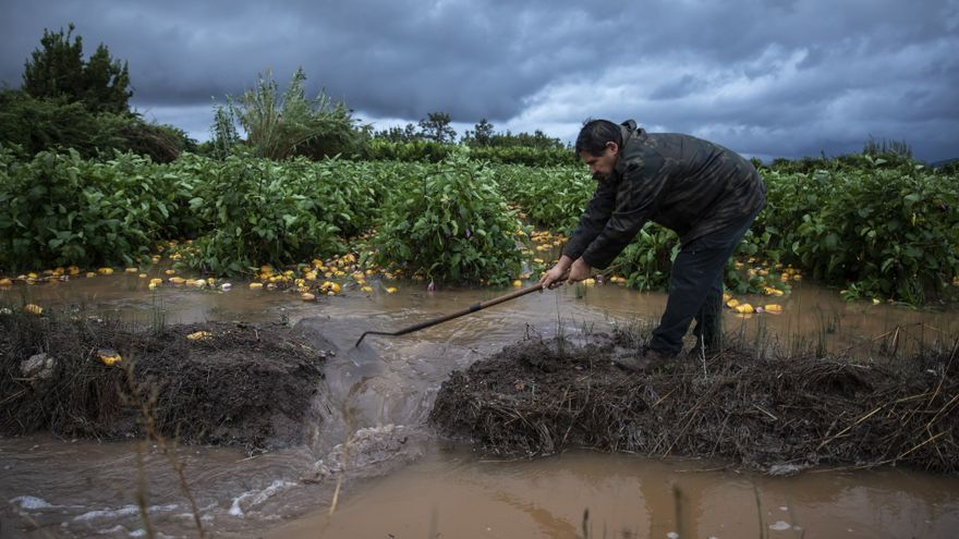 Castelló impulsa acciones de mejora para los agricultores
