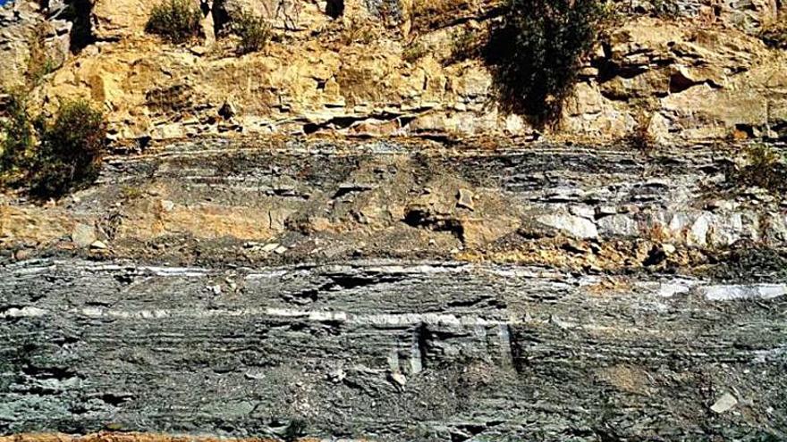La UVigo halla los primeros fósiles de polen y esporas del Jurásico en Etiopía
