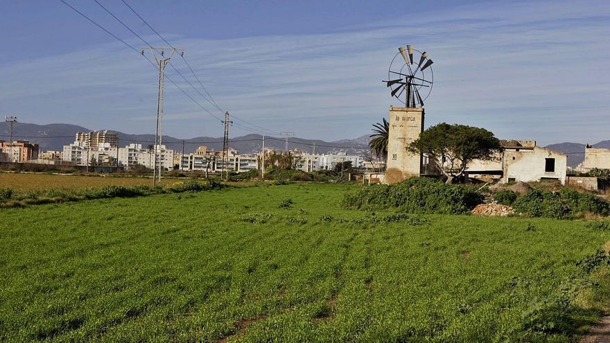 Una promotora comercializa ya viviendas protegidas en Son Bordoy