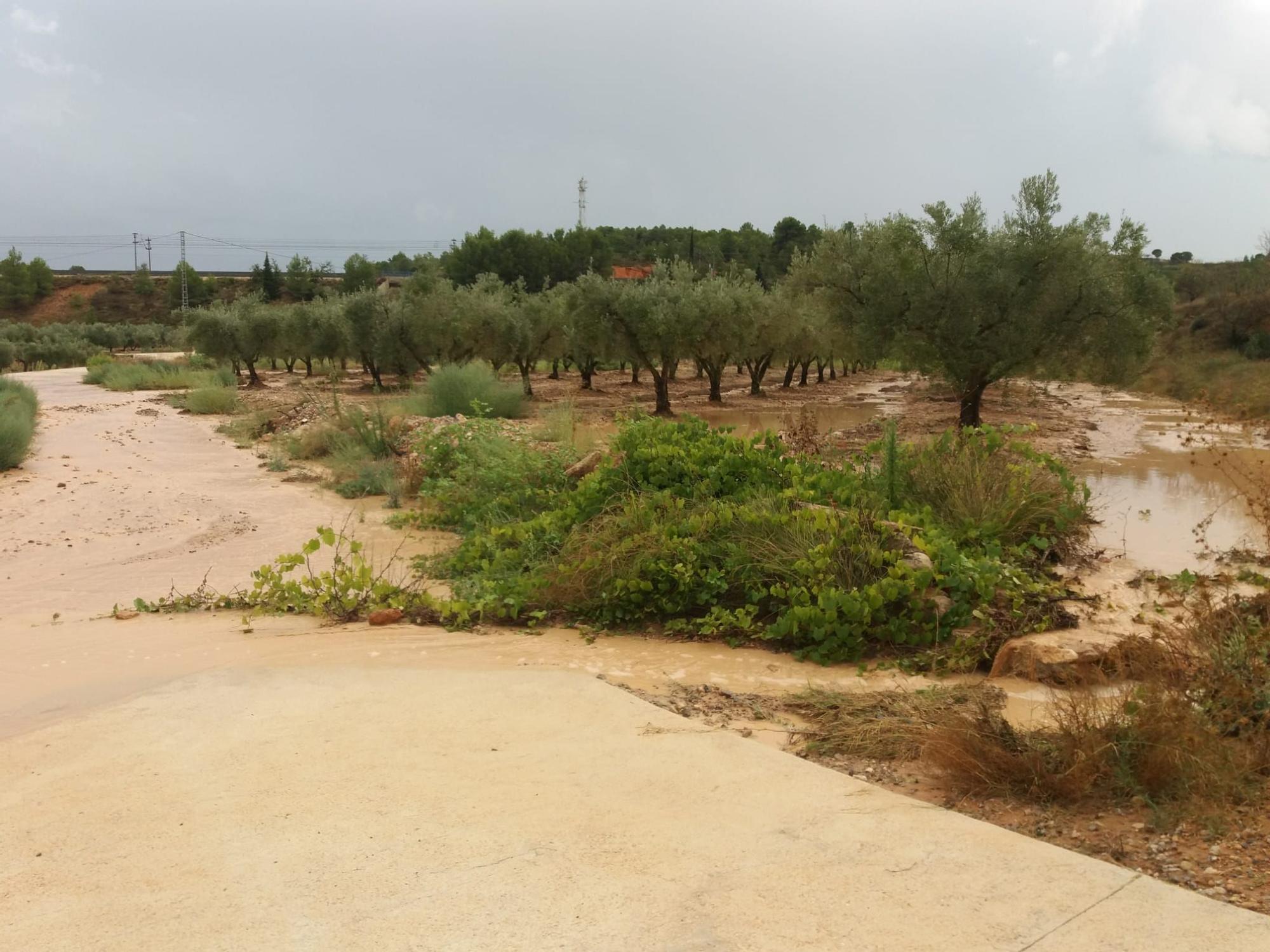 Las lluvias dejan hasta 50 litros por metro cuadrado en la Font de la Figuera