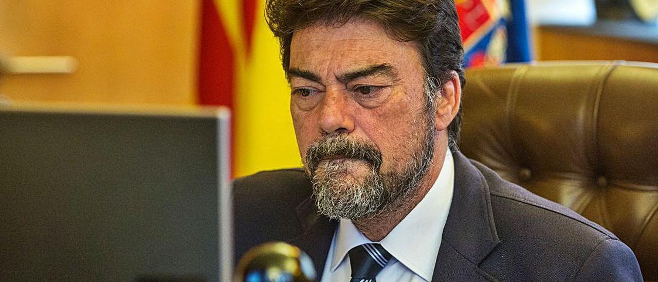 El alcalde de Alicante, Luis Barcala, ayer, en su despacho. |