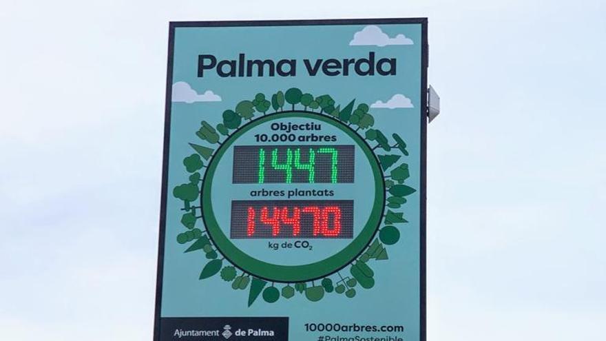 Palmario | Los arbustos no se suman al contador de árboles municipal