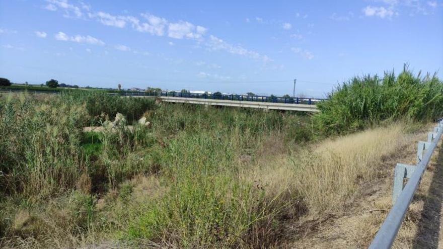Almussafes teme más inundaciones ante la falta de limpieza del barranco