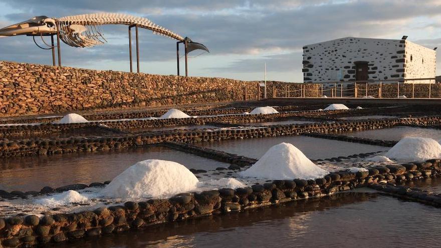 Las salinas del Carmen de Fuerteventura, la mejor sal marina de Canarias 2020