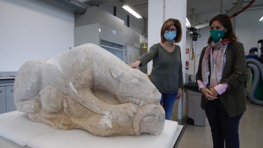 Leona íbera de La Rambla: un agricultor encuentra una pieza arqueológica que podría tener unos 3.000 años de antigüedad