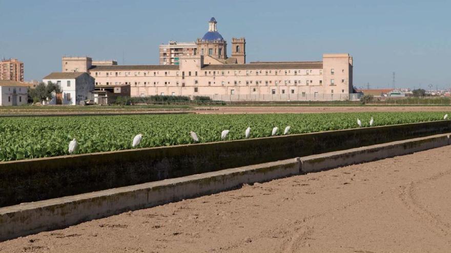 Comienzan los trabajos para poner en valor la huerta que rodea el monasterio de San Miguel de los Reyes