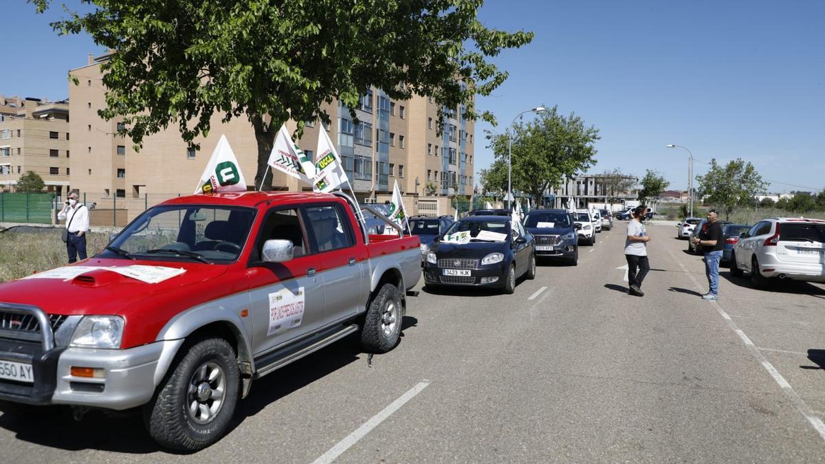Coches de UCCL, dispuestos para iniciar el recorrido por las calles de Zamora