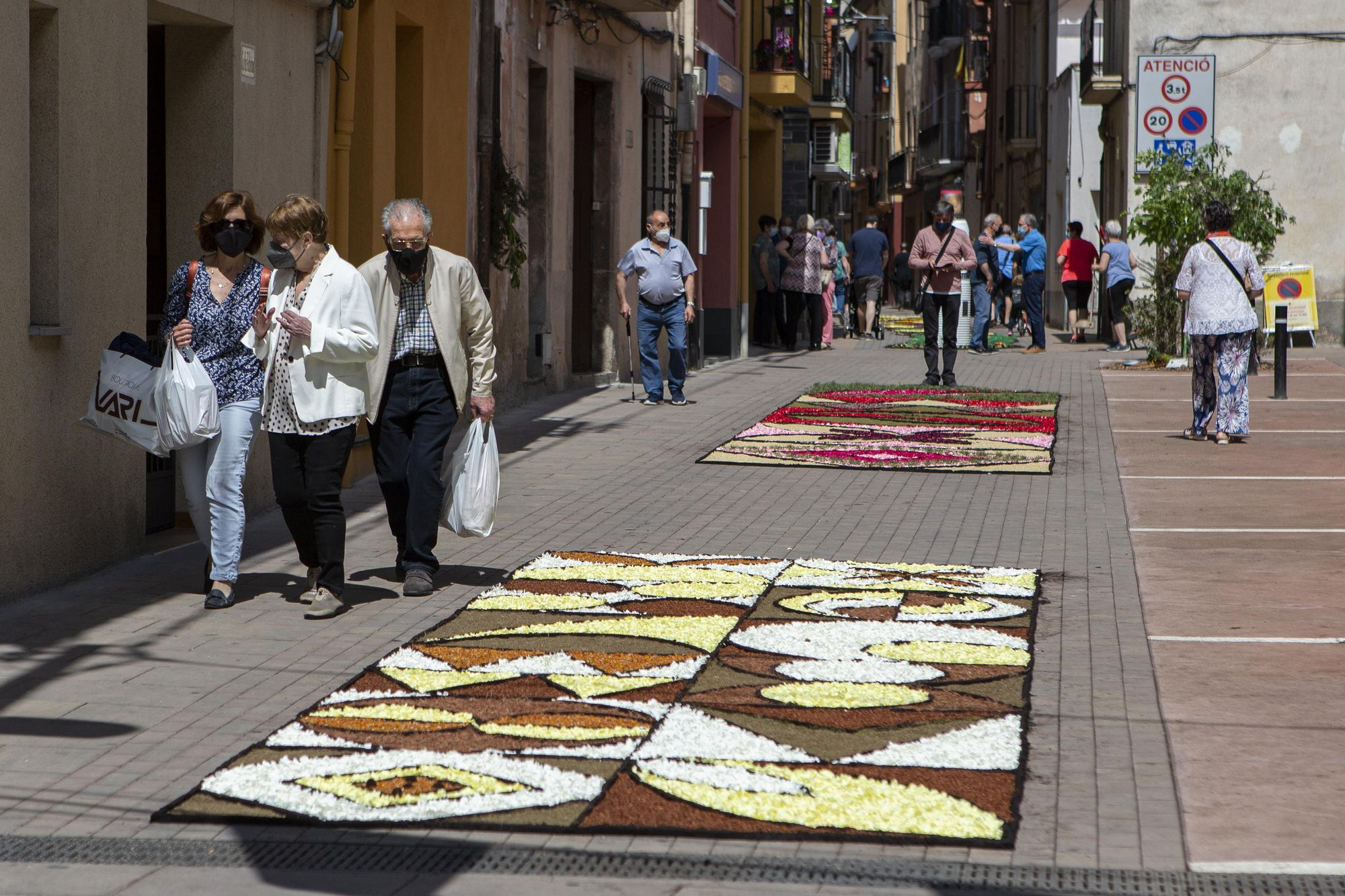 Mostra de Catifes de Flors d'Arbúcies
