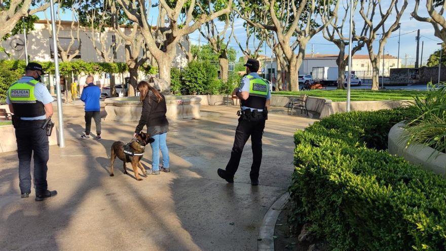 Enxampen quatre persones amb droga en dues places de Figueres