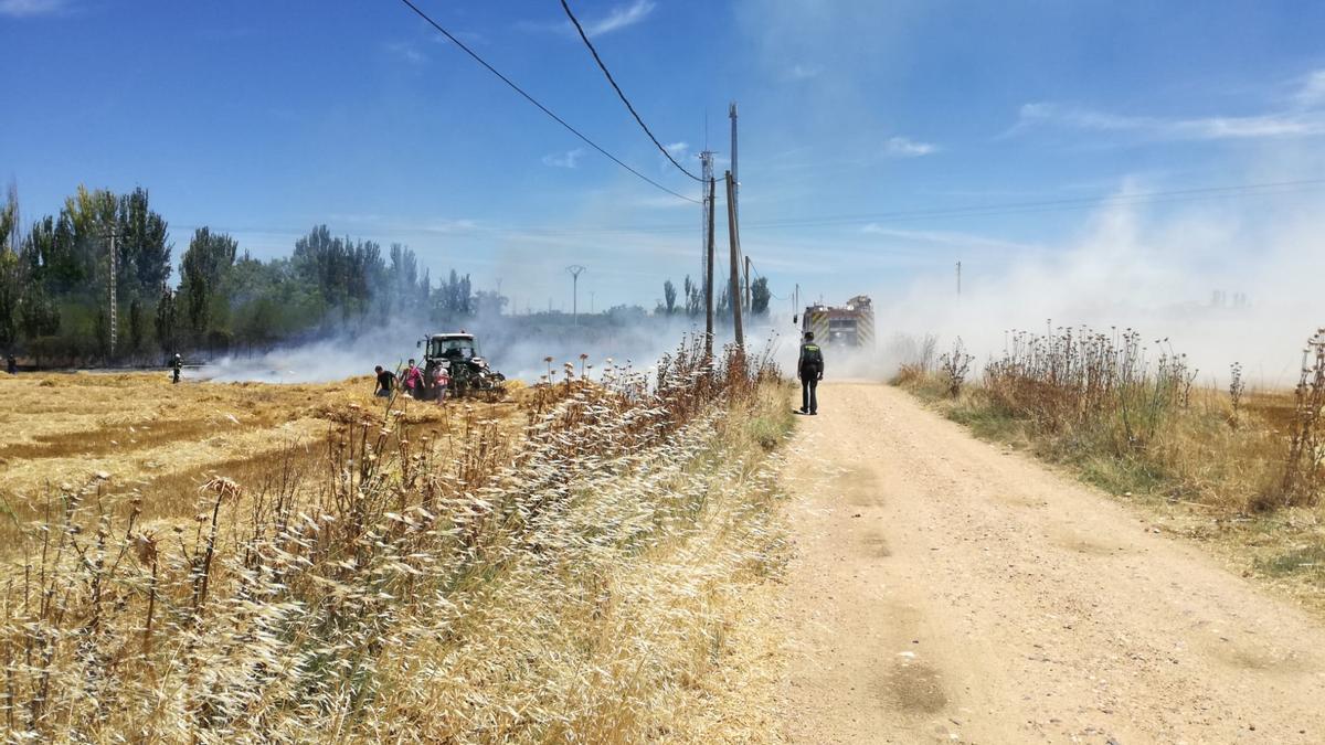 Un incendio en la provincia de Zamora.