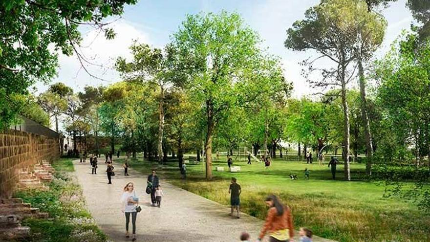 Palmas neuer Stadtwald soll ab September wachsen