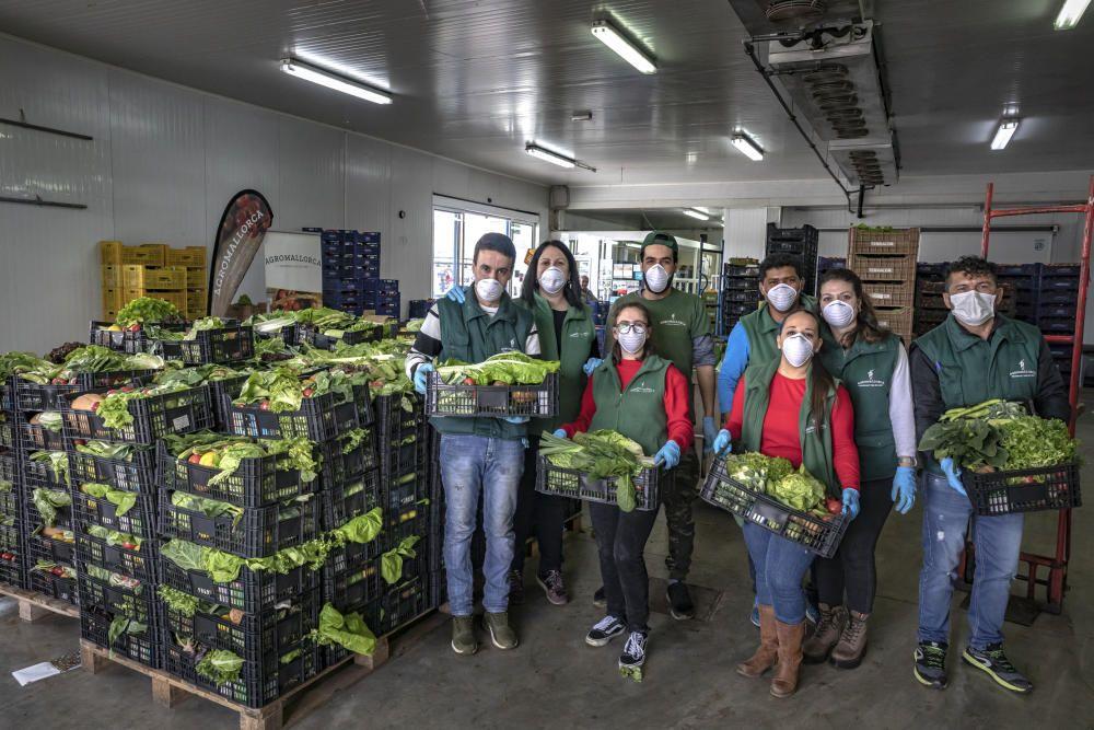 Coronavirus en Mallorca: El campo mallorquín se convierte en la respuesta al confinamiento