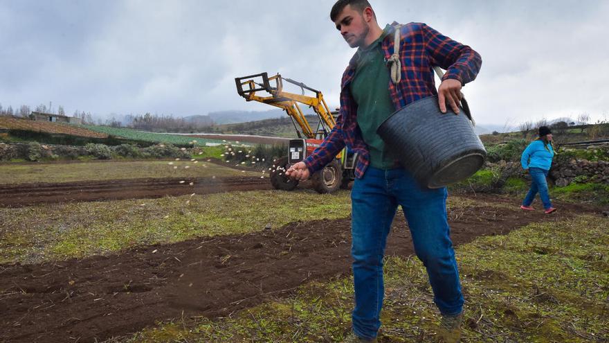 Canarias dedica 4,5 millones a modernizar las explotaciones agrícolas