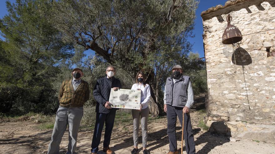 Diputación destina 380.000 € para que los municipios inviertan en sus medios naturales