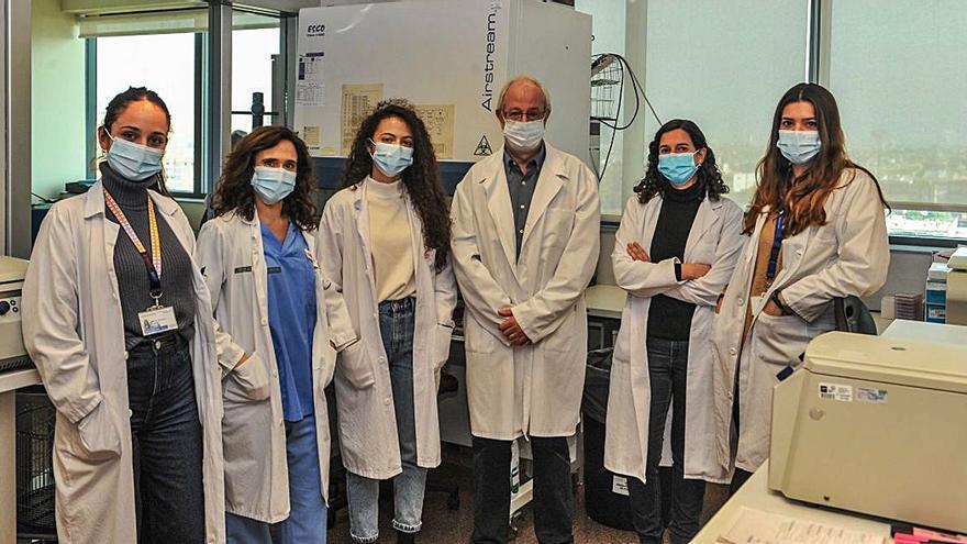 El nuevo diagnóstico ideado por la UPV, listo para ensayos
