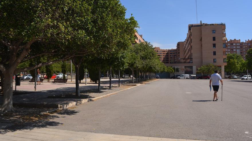 El Ayuntamiento trasplantará una hilera de árboles para facilitar la construcción del centro de salud de Garbinet