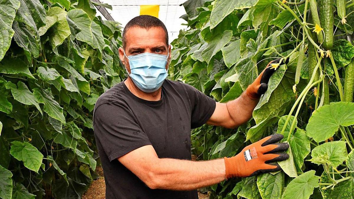 El campo malagueño está ahora pendiente de la Política Agraria Común.