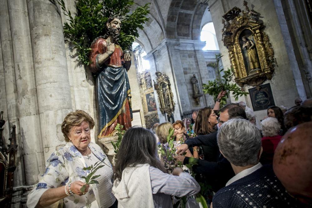 Fiesta de San Salvador en la Catedral