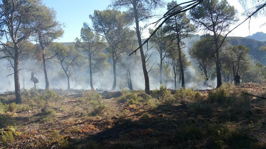 Los bomberos controlan un incendio de matorrales en el corazón de La Carrasqueta