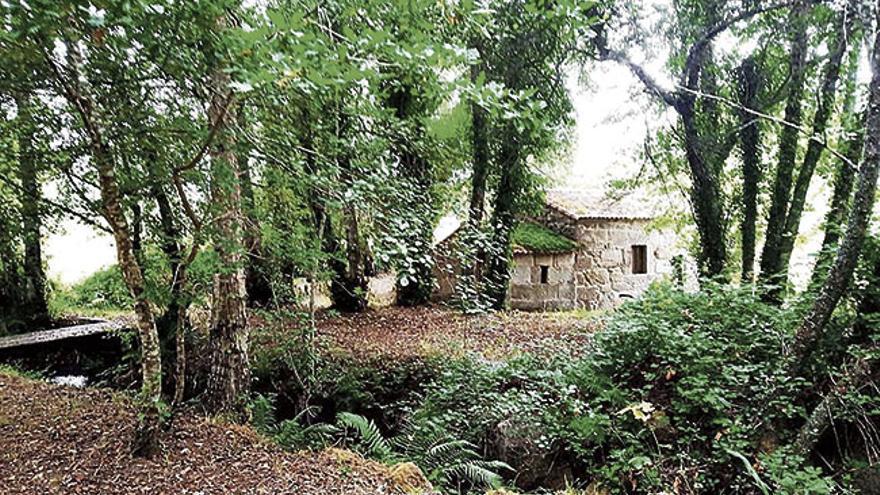 Parque etnográfico Muíños do río Caselas