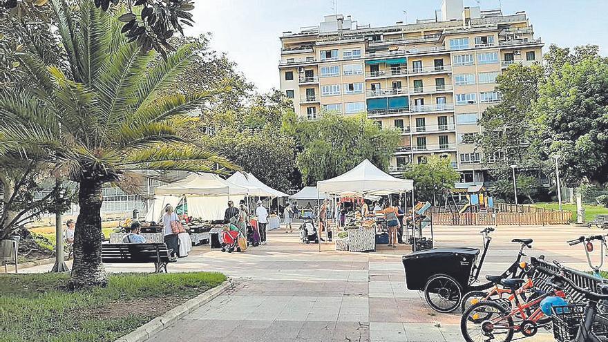 Palmario | Bauzá no dispone aún de teléfono ni de mesa en Cort