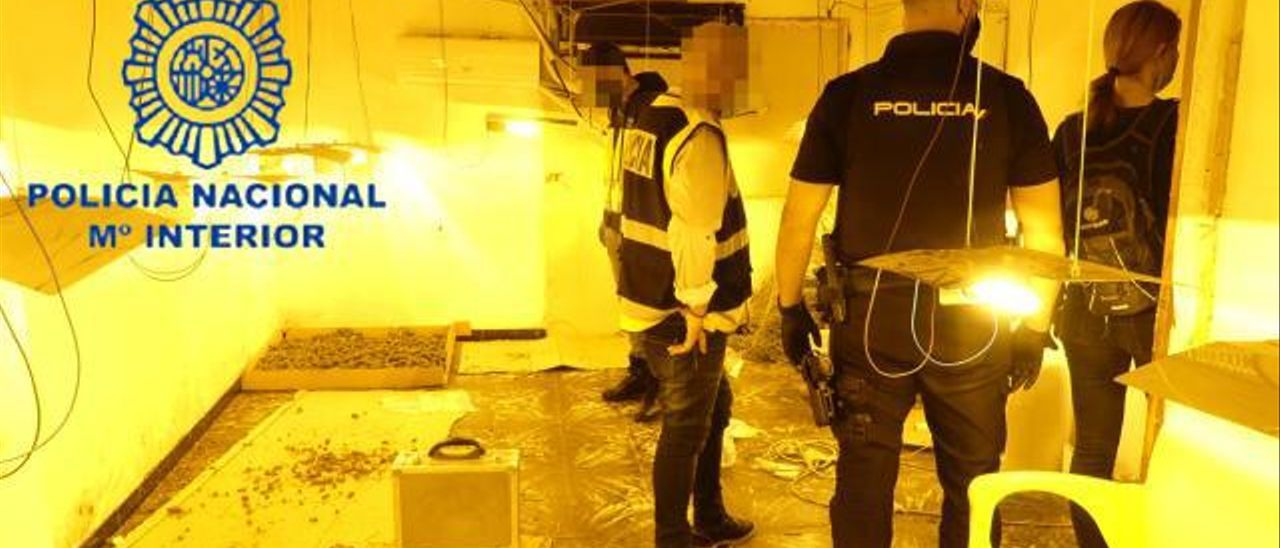 ACtuación contra el tráfico de drogas de la Policía Nacional de Gandia.
