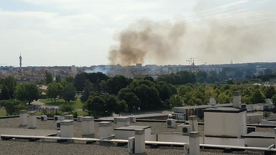 Arden unos matorrales cerca del camping de Zaragoza
