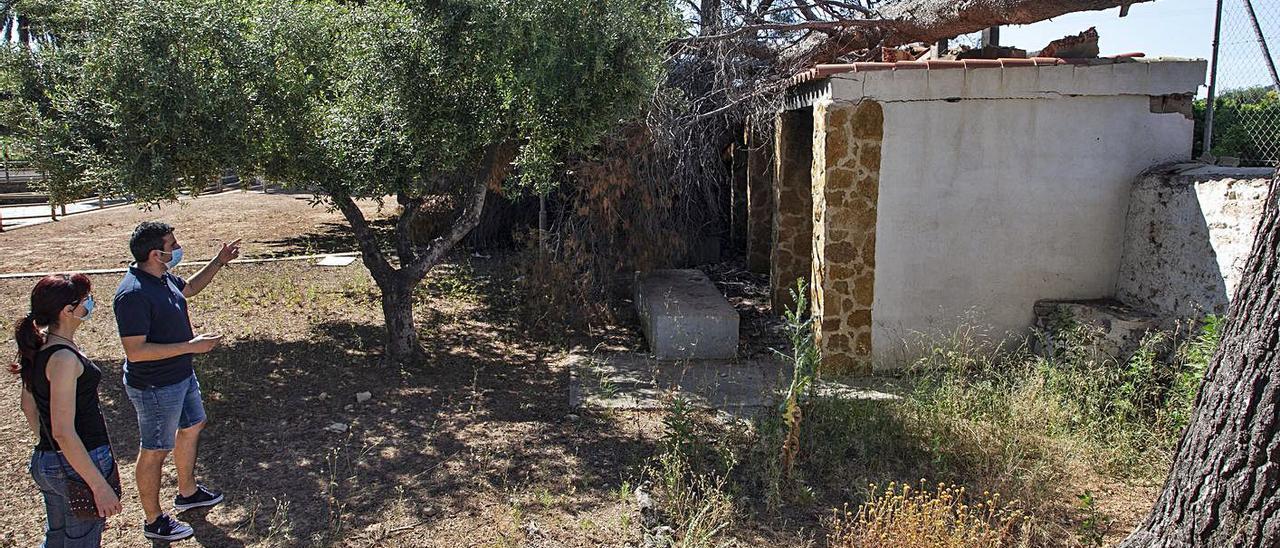 El alcalde, Nestor Albert, y la concejala, Mari Carmen Sito, contemplan un árbol caído. | DANIEL TORTAJADA