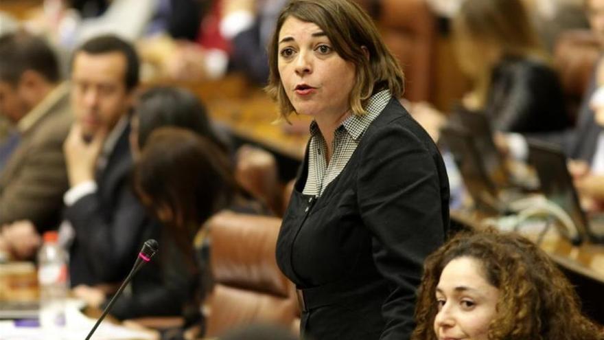 """IULV-CA acusa al PSOE-A de """"hacer trampa"""" en el debate sobre el sistema de financiación"""