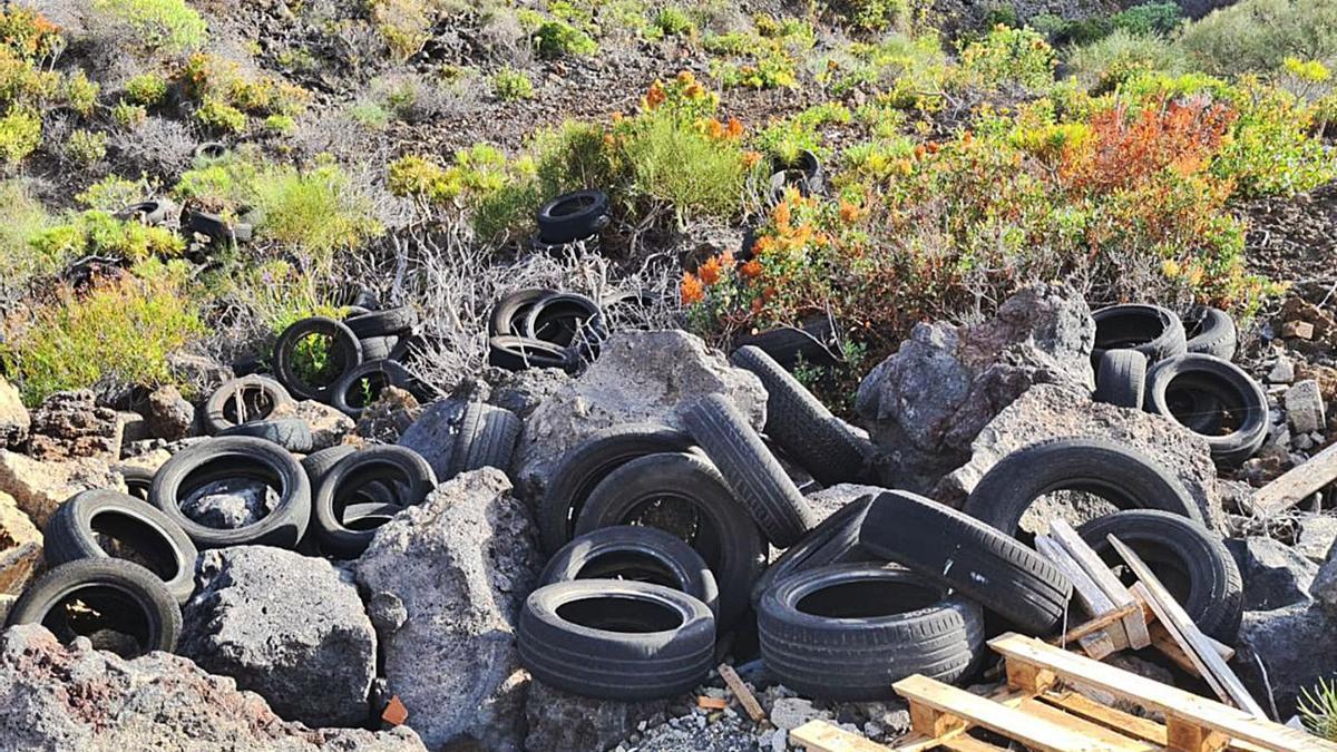 Concentración de neumáticos en un vertedero incontrolado.