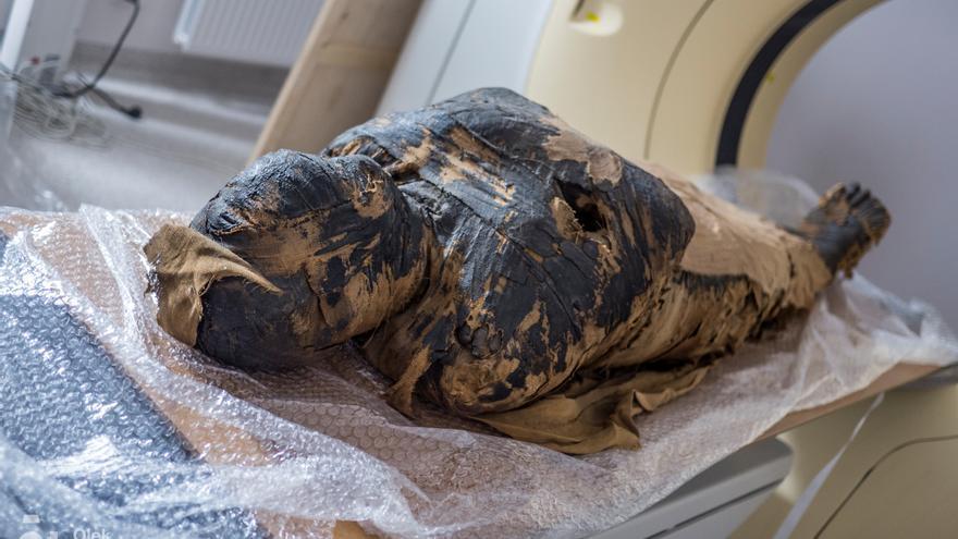 Descubren el primer caso de una momia egipcia de una embarazada