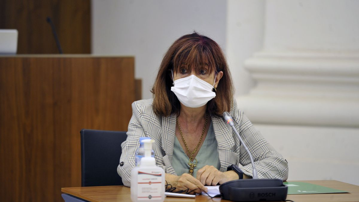 La directora general de Salud Pública del SES, Mª Pilar Guijarro, durante una comisión en la Asamblea.