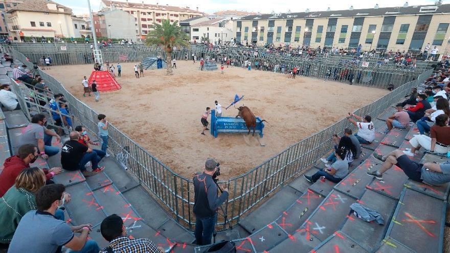 Vila-real exhibirá seis cerriles en plaza para la Mare de Déu de Gràcia