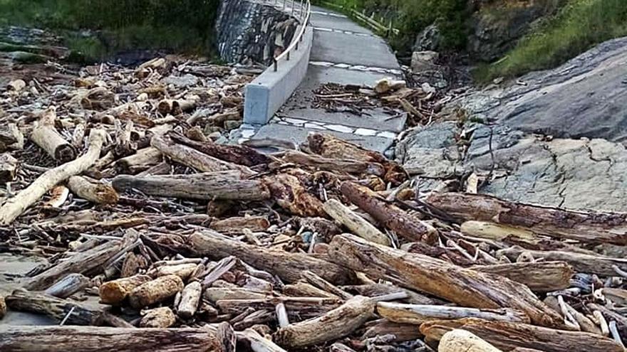 Castropol retira 25 toneladas de troncos de la playa de Arnao
