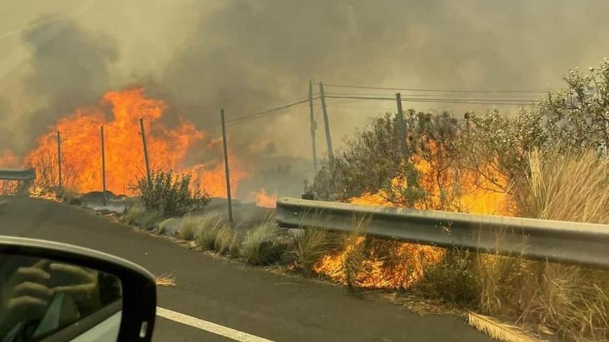 Incendio en El Paso, La Palma (agosto de 2021)