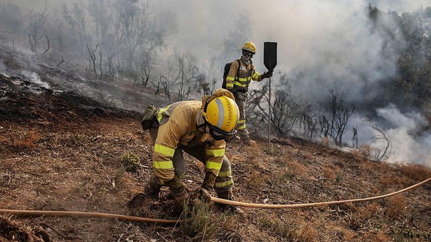 Un incendio en Muelas del Pan quema los territorios próximos al embalse del Esla
