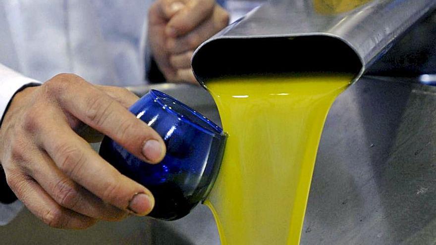 Identifican los genes que dan la calidad y la duración al aceite