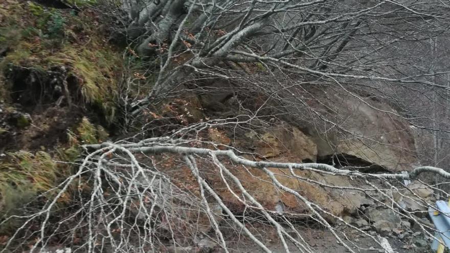 La carretera de Tarna permanecerá cerrada hasta el lunes a causa del argayo de Les Torres