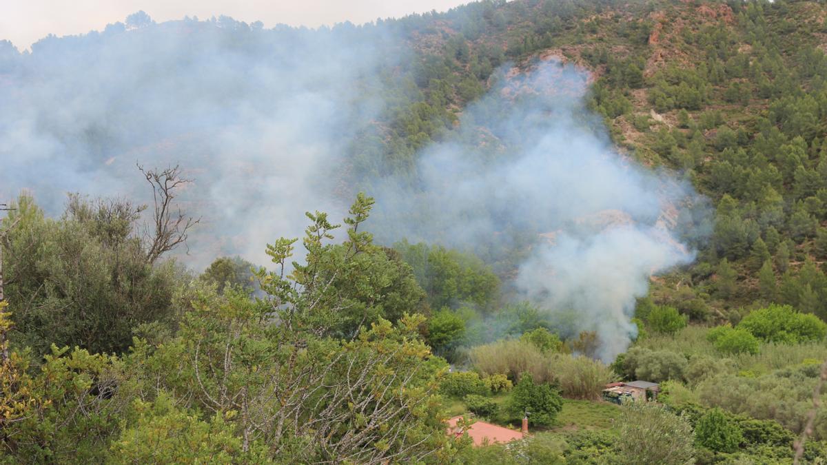 El incendio localizado junto al río en Segorbe, en la partida de Rascaña, cerca de las Piedras de Agostina.