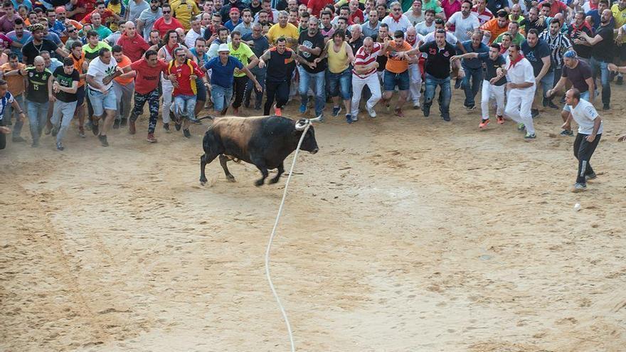 Benavente suspende definitivamente las Fiestas del Toro Enmaromado 2020