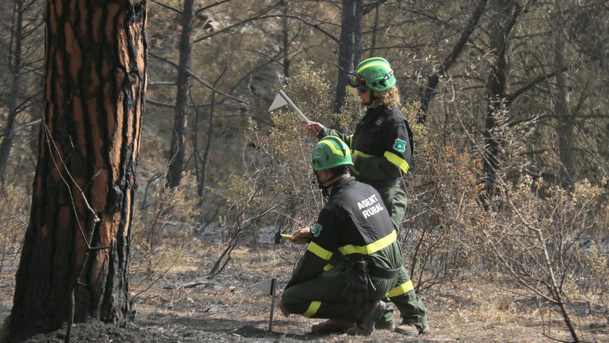 Una parella d'agents rurals treballant en l'incendi del Montgrí.