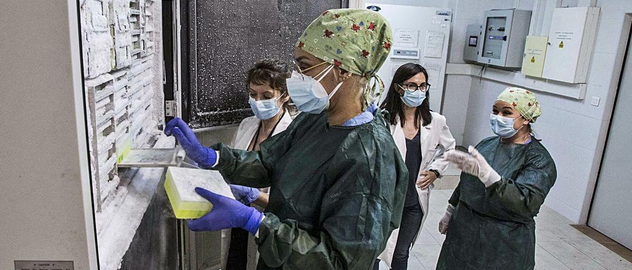 Las muestras de pacientes de coronavirus permanecen en los congeladores del Biobanco, guardadas a 80 grados bajo cero.
