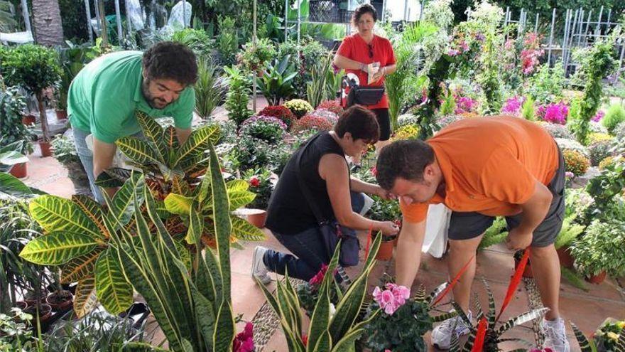 El Jardín Botánico acoge este domingo el primer Mercado de Trueque de Plantas